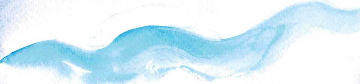 nicolettevanderleeuw